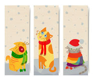 Cat banners Stock Image