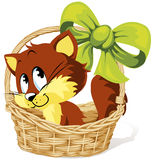 Cat in a basket. Illustration of brown cat in a wicker basket with green bow Stock Images
