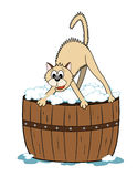 Cat bath time. Cartoon cat scared to have a bath in the wooden tub stock illustration
