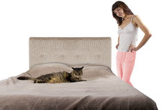 Cat on a Bed Royalty Free Stock Images