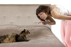 Cat on a Bed Stock Images