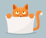 Cat beggar help animals cartoon character vector illustration Stock Photo