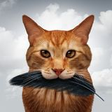 Cat Hunting Habits. Cat behavior and killer instinct concept as a domestic feline with a black bird feather in its mouth as a metaphor for pet psychology in a 3D Stock Photo