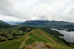 Cat Bells Stockbild