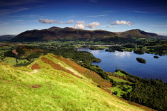 Cat Bells Stock Images