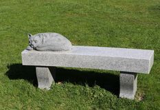 Cat Bench Royalty Free Stock Photography