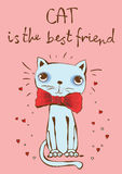 Cat is the best friend Royalty Free Stock Photos