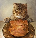A cat and a big piece of meat. stock photography