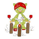 Cat on the bike royalty free illustration