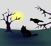 Cat and Bird. A bird sitting in a three, and a cat sitting and looking at the bird Royalty Free Stock Photos