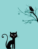Cat and bird on tree Royalty Free Stock Images