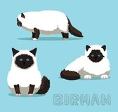 Cat Birman Cartoon Vector Illustration. Animal Character EPS10 File Format Royalty Free Stock Photography