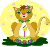 Cat with Birthday Cake Stock Photo
