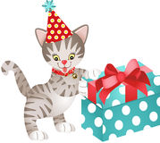 Cat birthday with gift Royalty Free Stock Photography