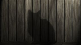 Cat, Black Cat, Power, Mieze, Black Royalty Free Stock Image
