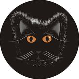 Cat on black Circle Royalty Free Stock Photo