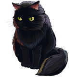 Cat. Black cat isolated on white Royalty Free Stock Image