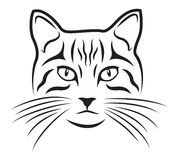 Cat. Black silhouette of cat on white background royalty free illustration