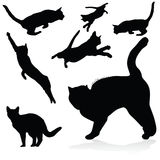 Cat black silhouettes Stock Photos