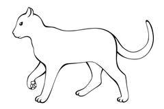 Cat black white isolated illustration Royalty Free Stock Image