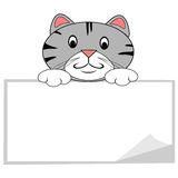Cat With Blank Banner. Gray tabby cat holding blank banner sign royalty free illustration