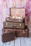 Cat with blue eyes sits inside vintage suitcases. Thai white with red marks cat with blue eyes sits inside vintage suitcases on a pink background toned picture Stock Image