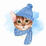 Cat in blue hat. Watercolor illustration Stock Photos