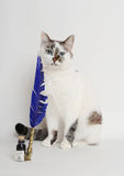 Cat with blue quill pen and ink. White cat with blue quill pen and ink Stock Photo