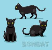Cat Bombay Cartoon Vector Illustration. Animal Character EPS10 File Format Stock Image