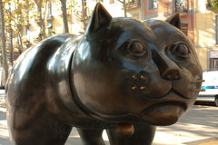 Cat of Botero Royalty Free Stock Photo