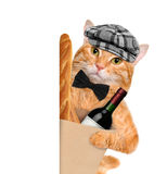 Cat with a bottle of wine and bread. Stock Photography