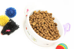 Cat bowl of dry food Royalty Free Stock Photography