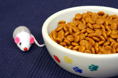 Cat Bowl with Food and Toy Stock Photo
