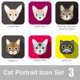 Cat breed face cartoon flat icon design Royalty Free Stock Images