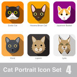 Cat breed face cartoon flat icon design Royalty Free Stock Photography