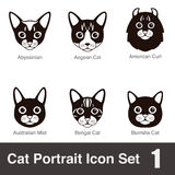 Cat breed face cartoon flat icon series. Vector illustration Royalty Free Stock Photos