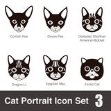 Cat breed face cartoon flat icon series Stock Photos