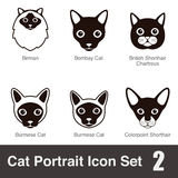 Cat breed face cartoon flat icon series Stock Photography