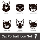 Cat breed face cartoon flat icon series Royalty Free Stock Photo