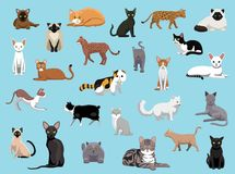25 Cat Breeds Cartoon Vector Illustration. Animal Character EPS10 File Format Royalty Free Stock Photo