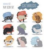 Cat breeds icon set flat style Royalty Free Stock Photo