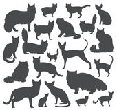 Cat breeds icon set flat style Stock Photography