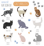 Cat breeds icon set flat style. Vector illustration Stock Photography