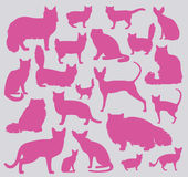Cat breeds icon set flat style Stock Images