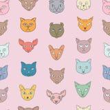 Cat breeds icon set Stock Image