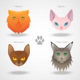 Cat Breeds icons Stock Photo