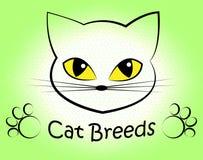 Cat Breeds Indicates Offspring Breeding och fött upp vektor illustrationer