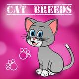 Cat Breeds Shows Bred Pets et Kitty illustration libre de droits