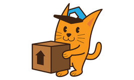 Cat Bring Box Photo stock