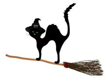 Cat on the broom Royalty Free Stock Images